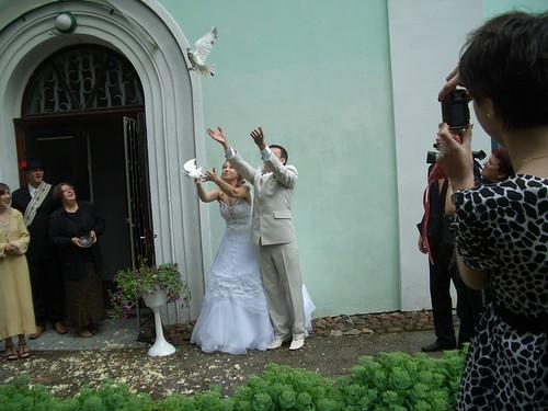 Запуск голубей. Красивый обряд.